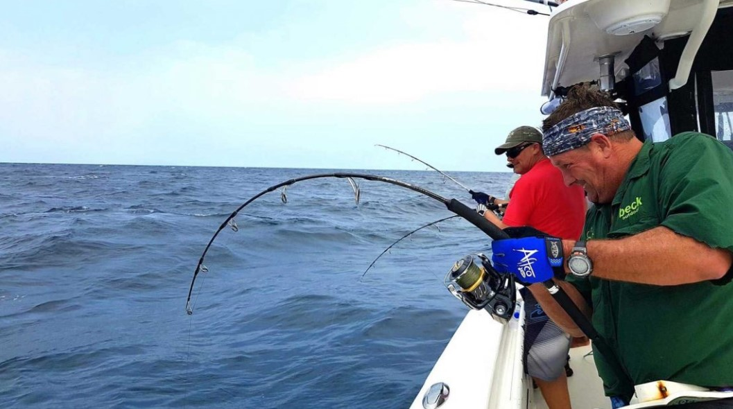4 Primary Techniques Applied to Fish in the Ocean
